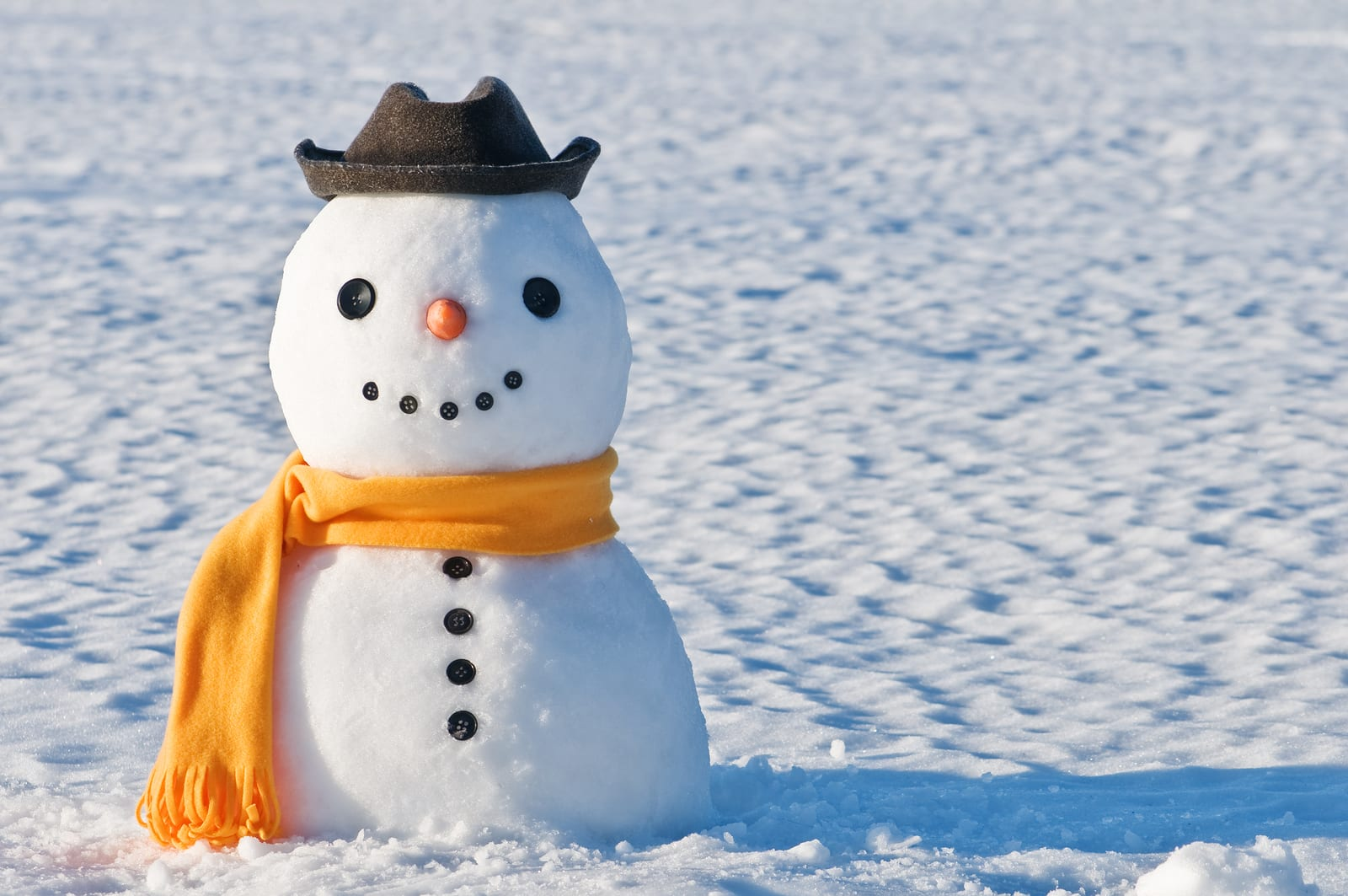 Cute Snowman  in Portland