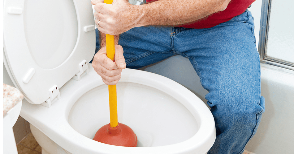 quality toilet bowl clog solutions in portland